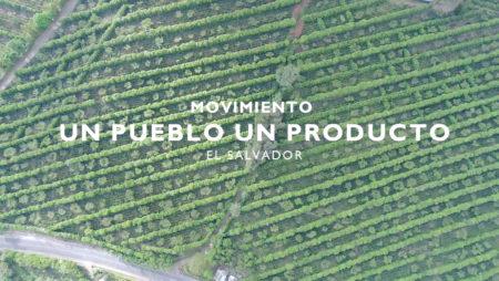 Movimiento Un Pueblo Un Producto (v. corta)